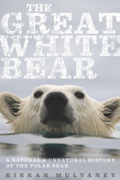 Buy The Great White Bear at Amazon