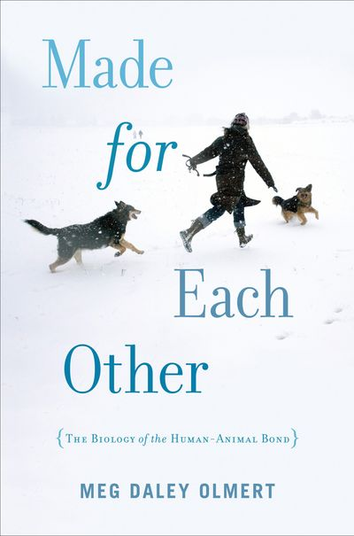 Buy Made for Each Other at Amazon