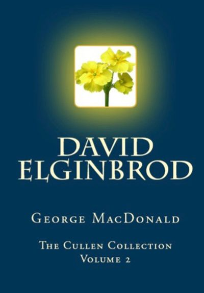 Buy David Elginbrod at Amazon