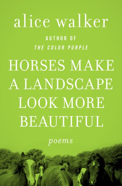 Buy Horses Make a Landscape Look More Beautiful at Amazon
