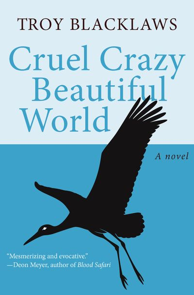 Cruel Crazy Beautiful World