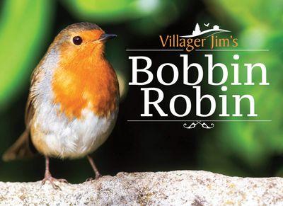 Buy Villager Jim's Bobbin Robin at Amazon