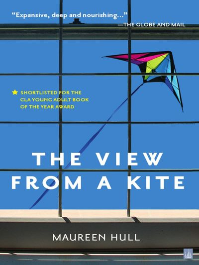The View From a Kite