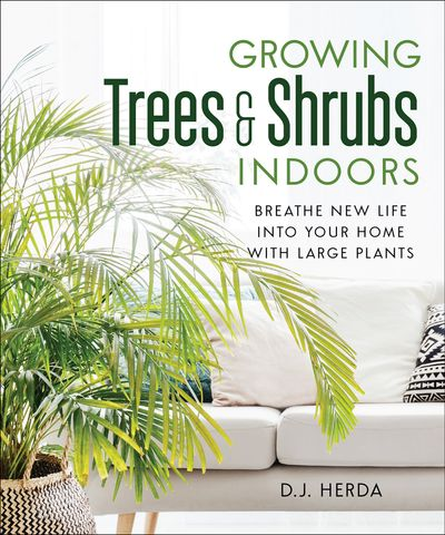 Buy Growing Trees & Shrubs Indoors at Amazon